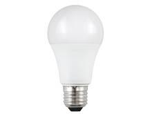 New Generation Domestic LED Lamp